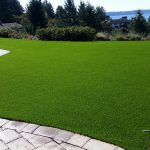 The advantages and disadvantages of artificial turf